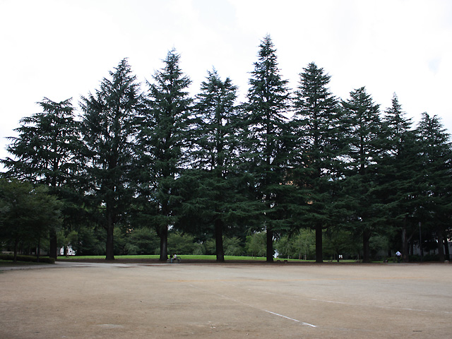 錦町公園 2