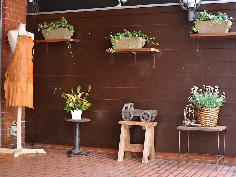 RESO. 外の植物たち