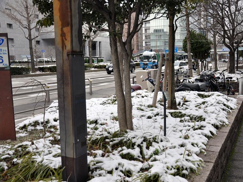 名古屋雪模様