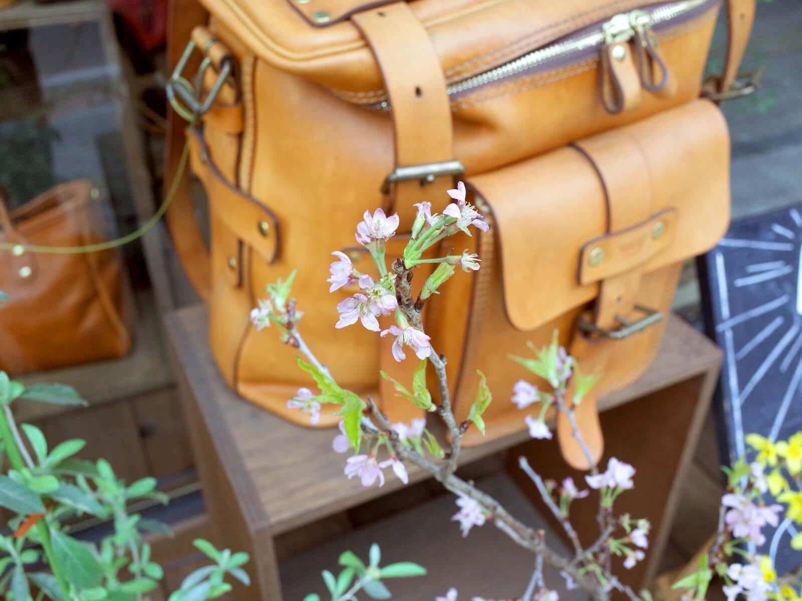 花咲く仙台