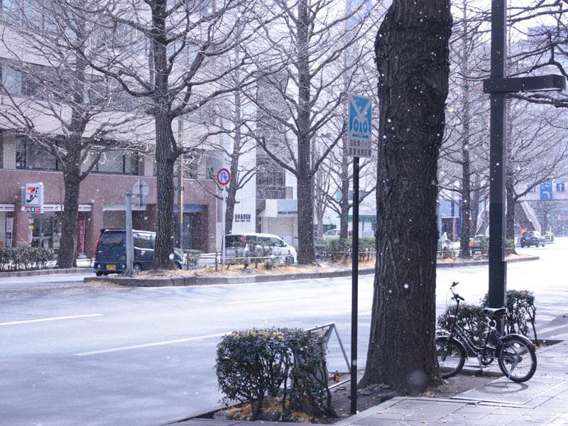 1仙台初雪