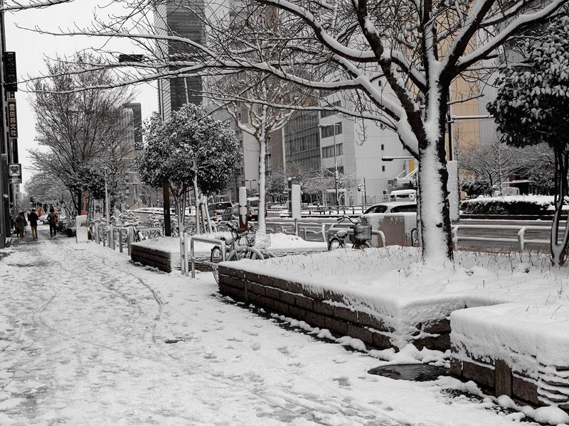 名古屋店前の雪2