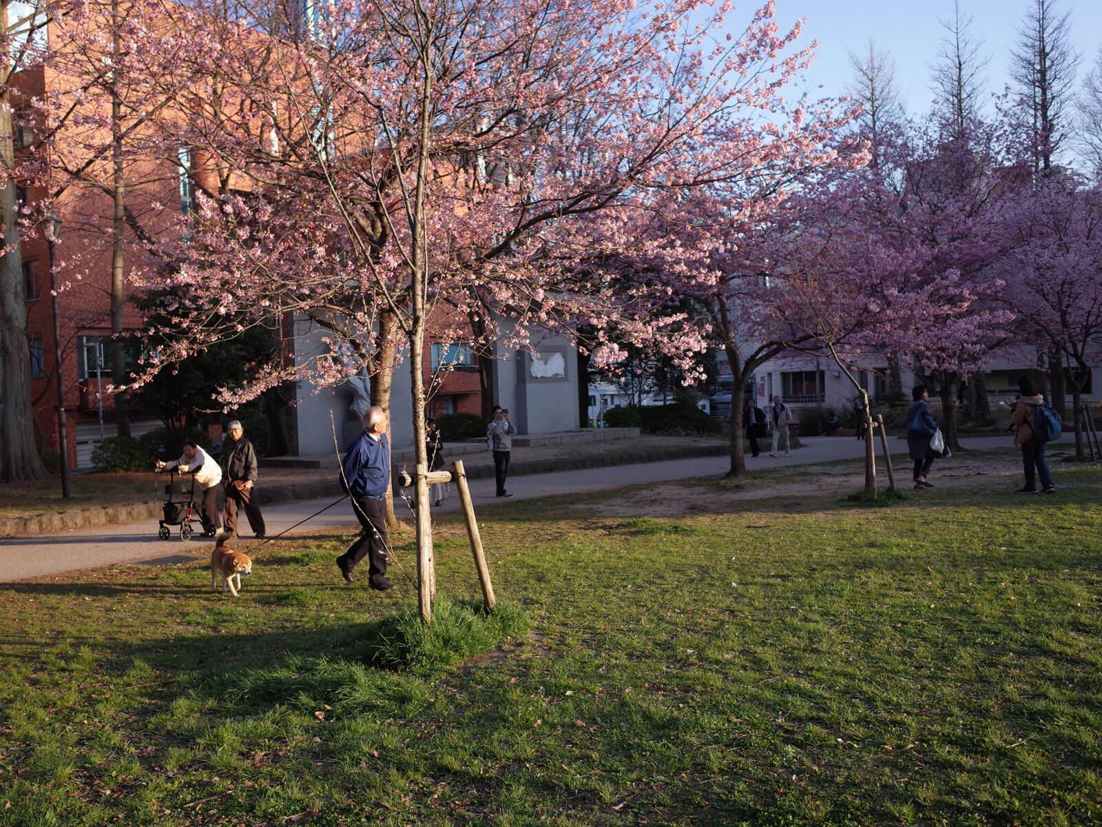 仙台の公園