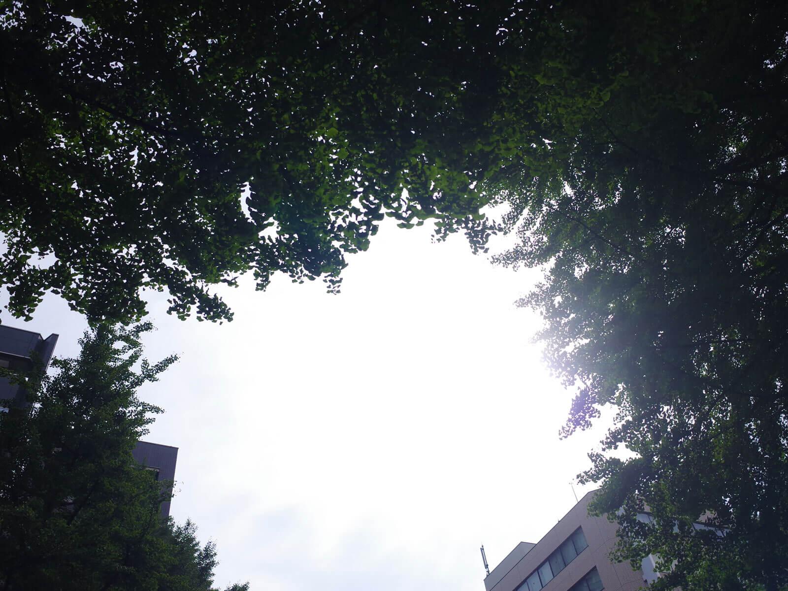 1雨やんだ