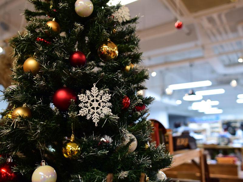 本店クリスマスディスプレイ2