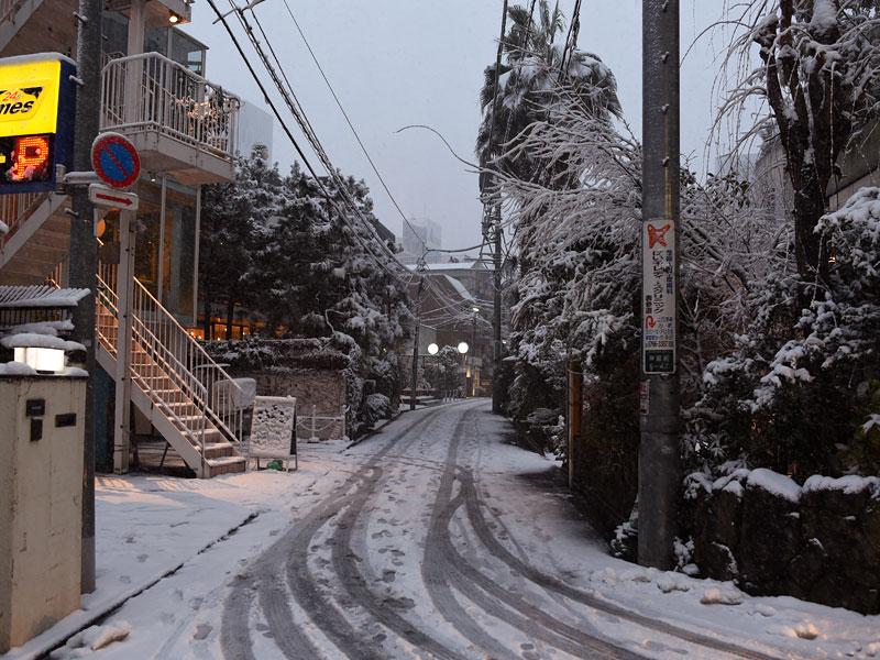 本店付近の雪景色