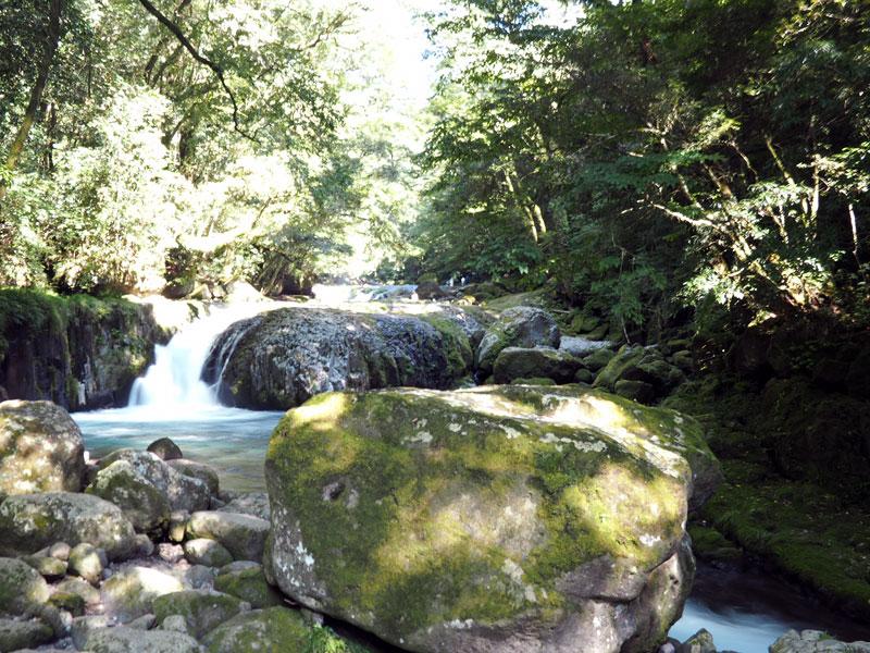 熊本県菊池渓谷