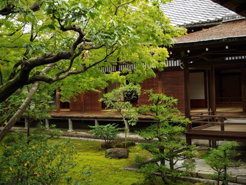 大阪研修時、仁和寺の風景