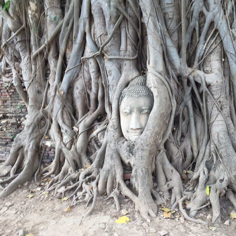 海外旅行、タイの様子その2