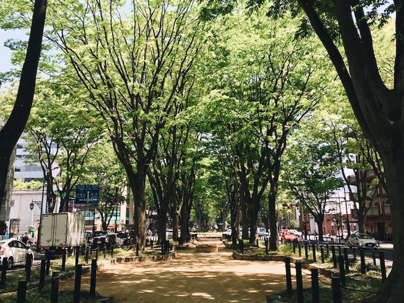 仙台店近くの定禅寺通りの様子