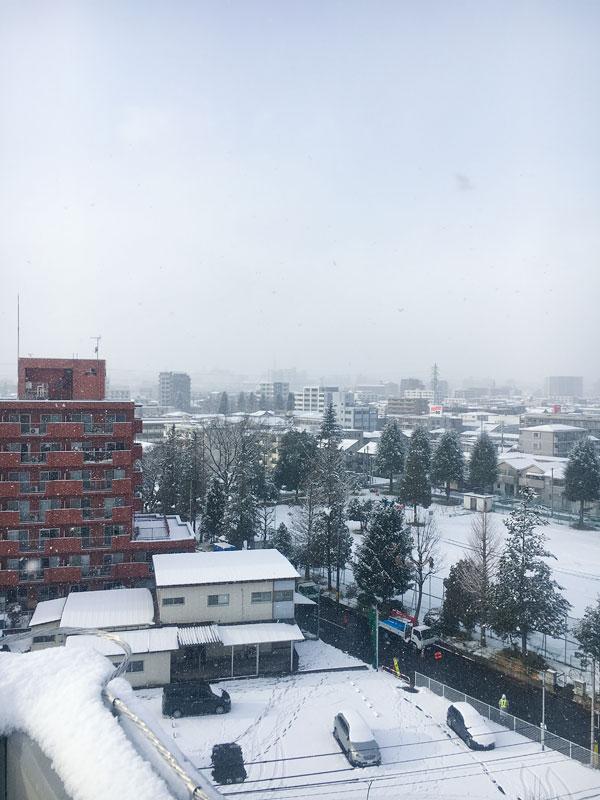 仙台の雪景色