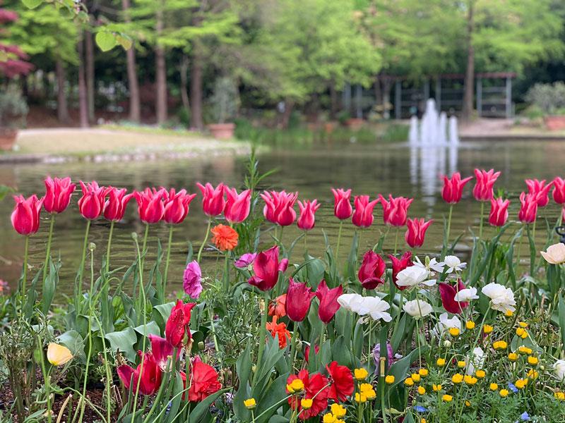 花の都パリへ